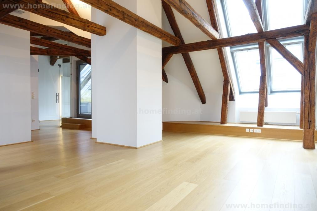 Wollzeile: great 3 rooms with terrace