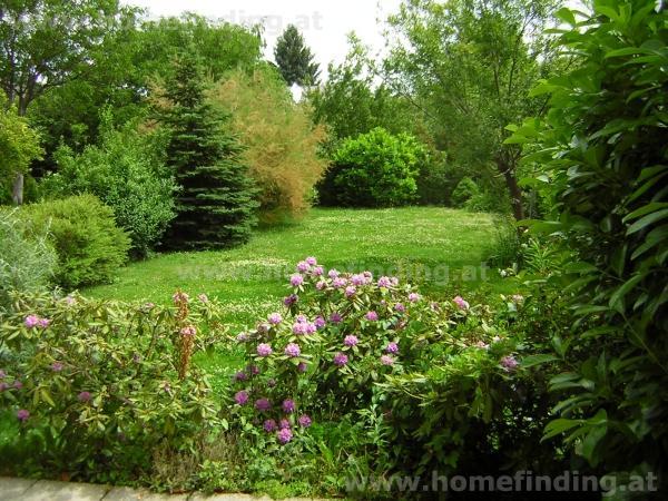 Komfortable  Neubauvilla mit schönem Garten